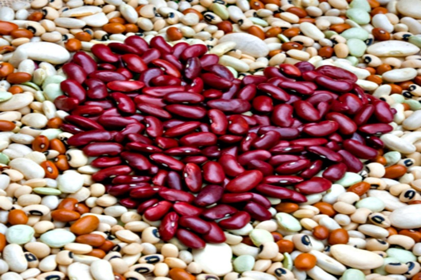 Why we love legumes!