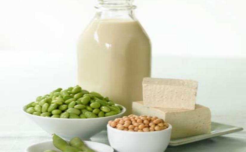 Protein – healthy veganprotein.