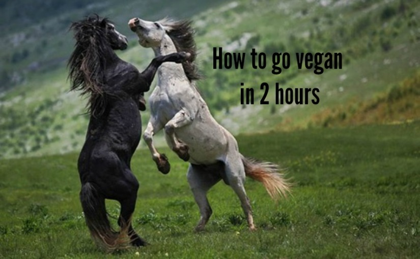 Going vegan in 2 hours.